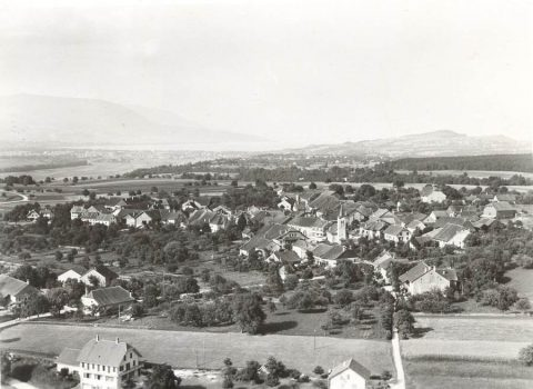 Suchy en 1950